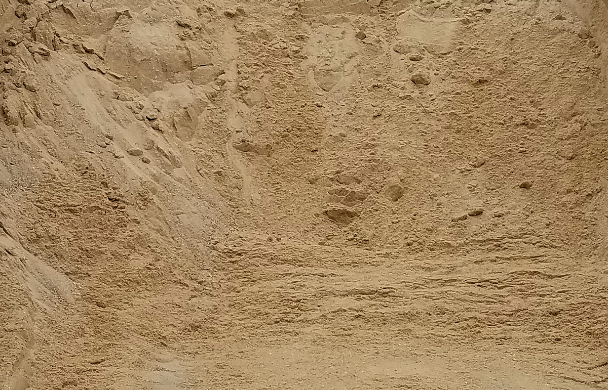 All-Purpose Sand